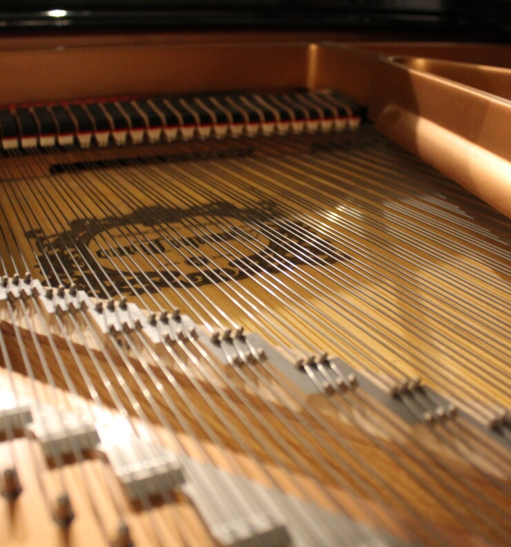 Do you want to buy a piano? Here are the most expensive ones